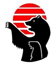 Российская федерация джиу-джитсу